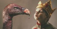 Mimado x abutre